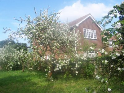Orchard bed and breakfast, Rochester, Kent UK